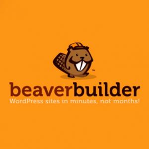 Beaver Builder Pro Nulled WordPress Plugin free download